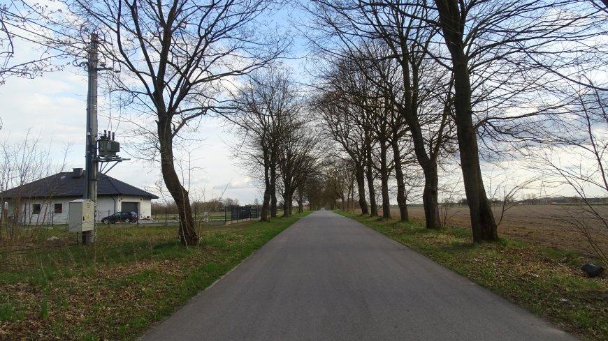 Na zdjęciu droga gminna w miejscowości Niwki, przy której pojawi się oświetlenie na odcinku około 100 metrów bieżących.